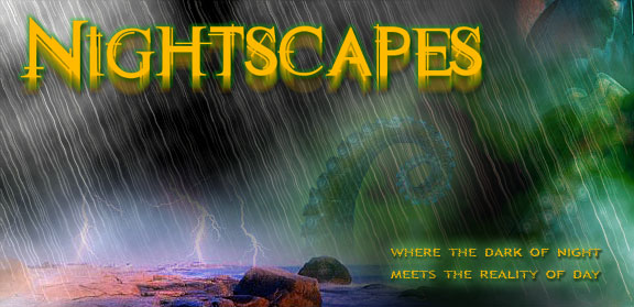 Nightscapes -- Where the dark of night meets the reality of day